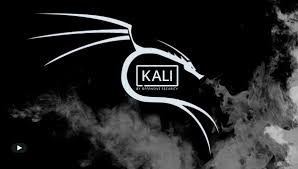 Photo of Kali Linux New Release 2019.4: Undercover mode and new themes