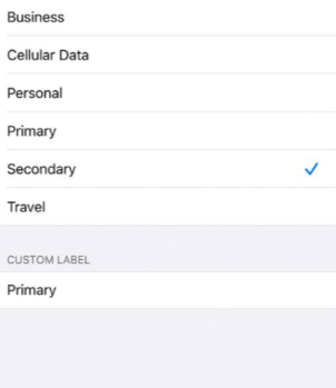 How to enable Dual Sim / E-sim on iPhone?