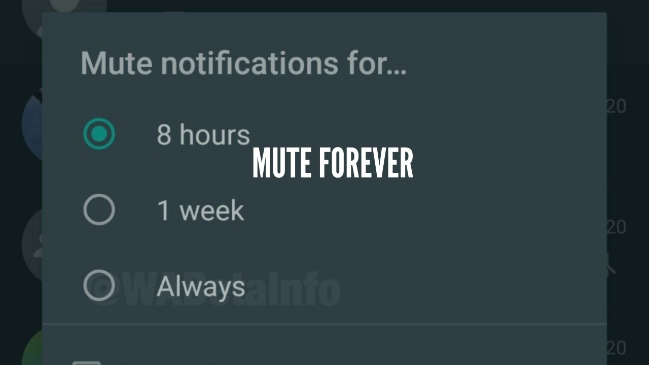whatsapp mute beta update